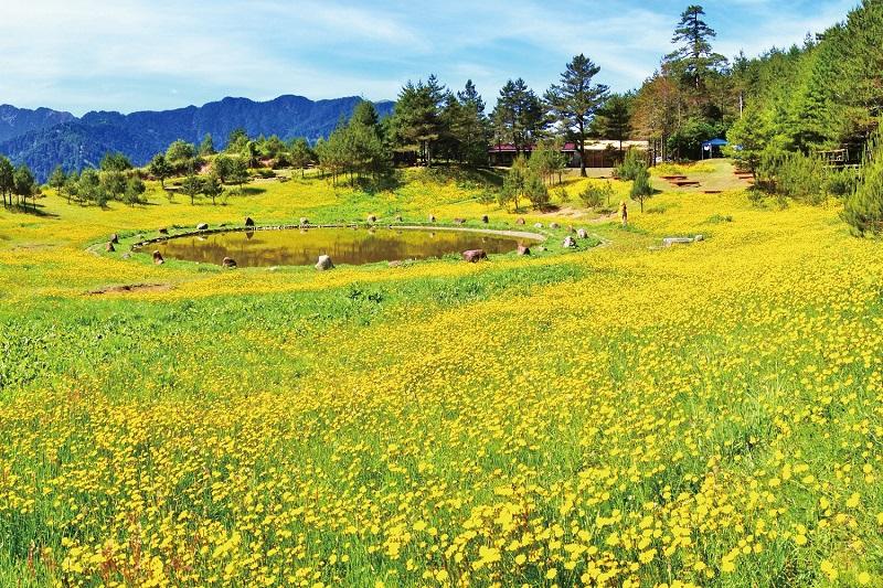 Lishan-Scenic-Area